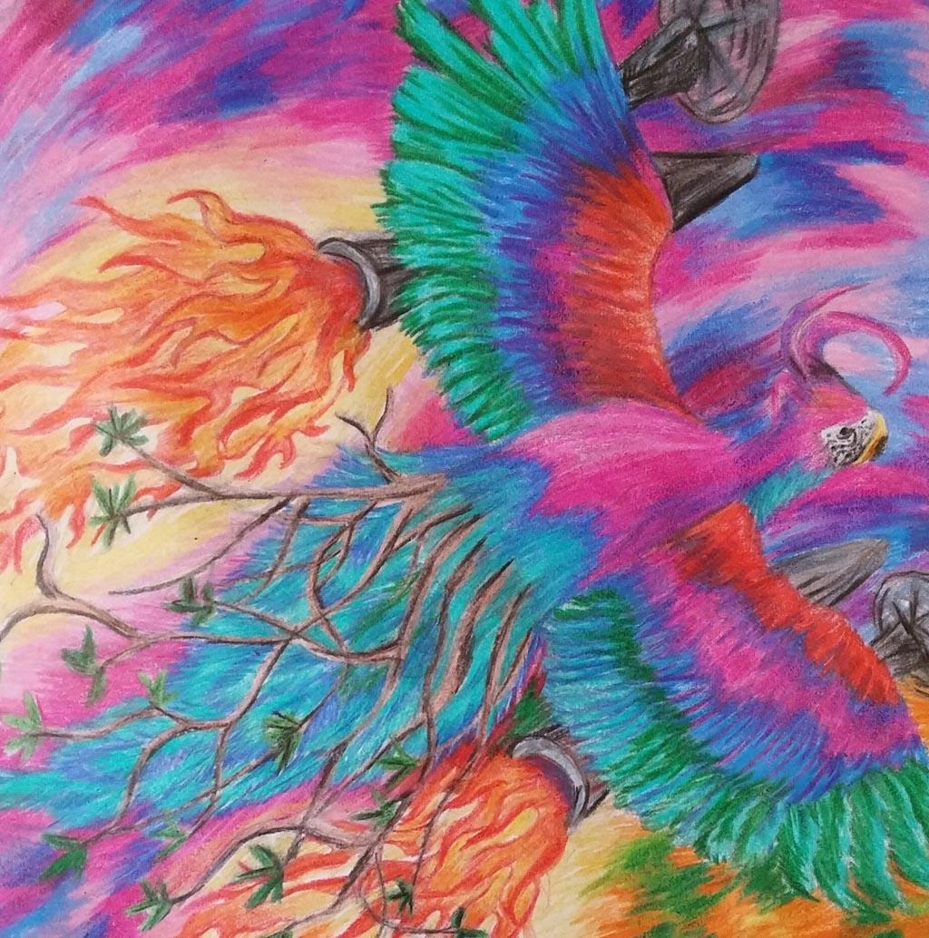Jet Parrot